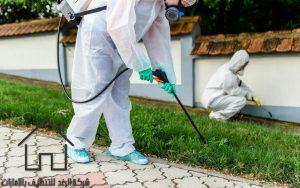 شركة مكافحة حشرات بالشارقة