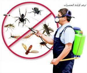 شركة مكافحة حشرات أبوظبى